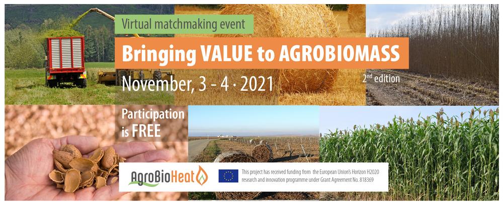 Bringing Value to Agrobiomass